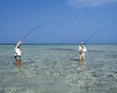 Fishing trips and sportfishing vacations international for All inclusive fishing packages